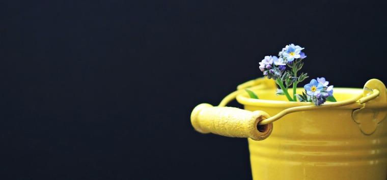 bucket-2156659_1920